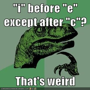Philosoraptor Weighs In on Spelling