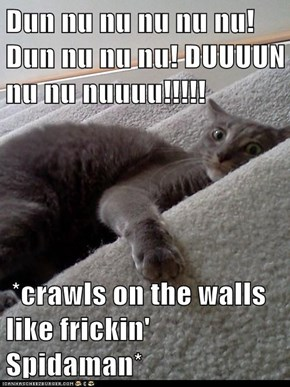 Dun nu nu nu nu nu! Dun nu nu nu! DUUUUN nu nu nuuuu!!!!!   *crawls on the walls like frickin' Spidaman*