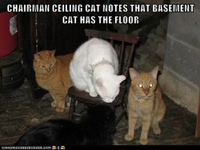 CHAIRMAN CEILING CAT NOTES THAT BASEMENT CAT HAS THE FLOOR