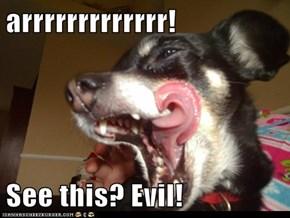 arrrrrrrrrrrrr!  See this? Evil!