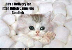 Has a Delivery for  Itteh Bitteh Camp Fire Comiteh