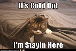 It's Cold Out  I'm Stayin Here