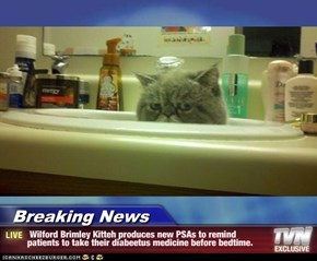 Breaking News -  Wilford Brimley Kitteh produces new PSAs to remind patients to take their diabeetus medicine before bedtime.