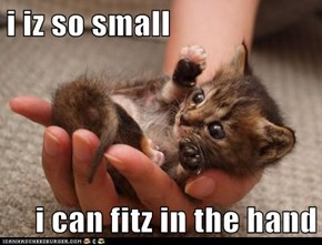 i iz so small  i can fitz in the hand