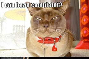 I can haz a complaint?