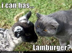 i can has...  Lamburger?
