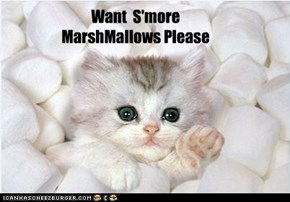 Want  S'more  MarshMallows Please