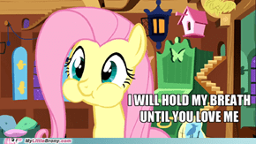 Don't hate on ponies!