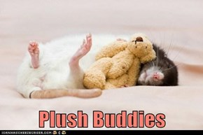 Plush Buddies