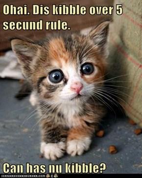 Ohai. Dis kibble over 5 secund rule.  Can has nu kibble?