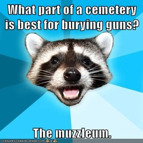 What part of a cemetery is best for burying guns?  The muzzleum.