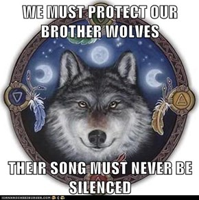 WE MUST PROTECT OUR BROTHER WOLVES  THEIR SONG MUST NEVER BE SILENCED