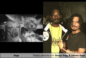 Dogs Totally Looks Like Snoop Dogg & Johnny Depp