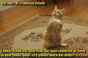But...but...Ai iz inocent kitteh!  I neber clawd dat sofa, stolz dat tuna sammich, or peed in dem shooz. Umm...iz U gonna finich dat milkz?