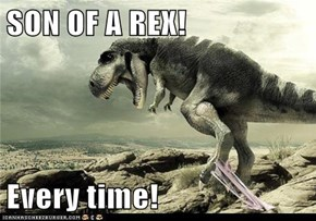 SON OF A REX!  Every time!
