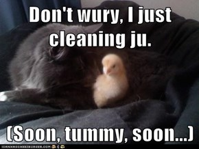Don't wury, I just cleaning ju.  (Soon, tummy, soon...)