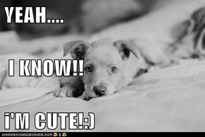 YEAH....  I KNOW!! i'M CUTE!:)