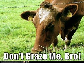Don't Graze Me, Bro!
