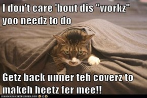 """I don't care 'bout dis """"workz"""" yoo needz to do  Getz back unner teh coverz to makeh heetz fer mee!!"""