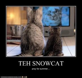 TEH SNOWCAT