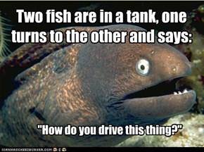 Beware: Fish Tanks!