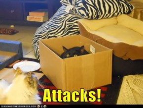 Attacks!
