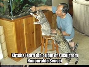 Sushi origins
