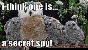 i think one is...  a secret spy!