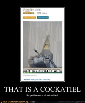 THAT IS A COCKATIEL