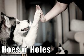 Hoes n' Holes