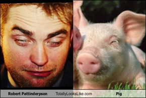 Robert Pattinderpson Totally Looks Like Pig