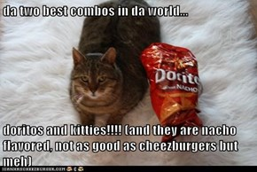 da two best combos in da world...  doritos and kitties!!!! (and they are nacho flavored, not as good as cheezburgers but meh)