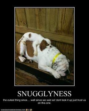 SNUGGLYNESS