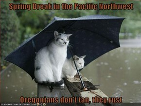 Spring Break in the Pacific Northwest  Oregonians don't tan, they rust