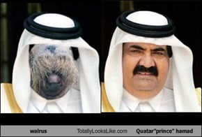 "walrus Totally Looks Like Quatar""prince"" hamad"