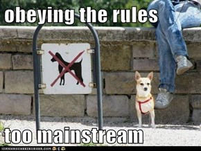 obeying the rules  too mainstream