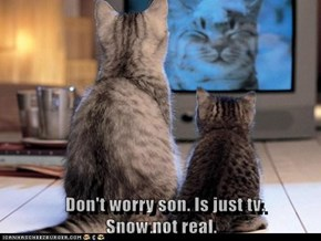 Don't worry son. Is just tv.                                     Snow not real.