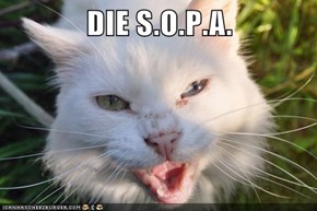 DIE S.O.P.A.