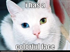i has a  colorful face