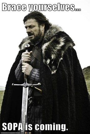 Brace yourselves...  SOPA is coming.