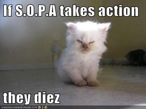If S.O.P.A takes action  they diez