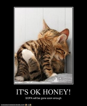 IT'S OK HONEY!