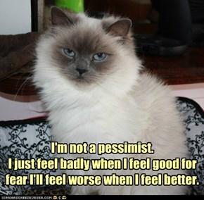 I'm not a pessimist.