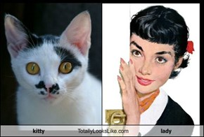 kitty Totally Looks Like lady
