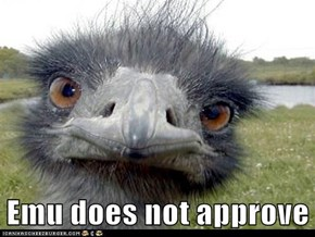 Emu does not approve