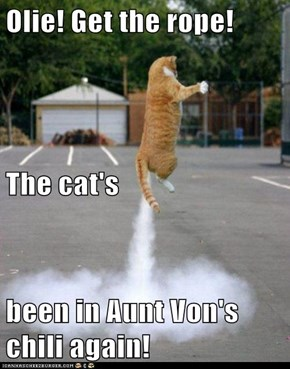 Olie! Get the rope! The cat's been in Aunt Von's chili again!