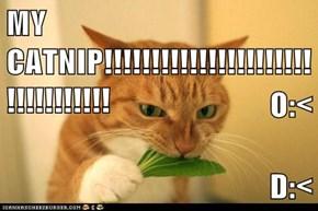 MY CATNIP!!!!!!!!!!!!!!!!!!!!!!!!!!!!!!!!! O:< D:<