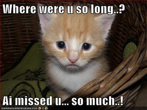Where were u so long..?  Ai missed u... so much..!