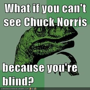 What if you can't see Chuck Norris  because you're blind?