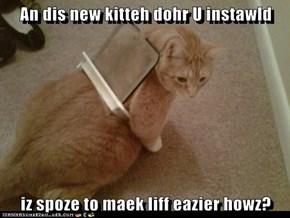 An dis new kitteh dohr U instawld  iz spoze to maek liff eazier howz?